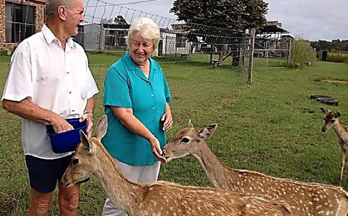 Oh Deer – Mesopotamia Deer Farm