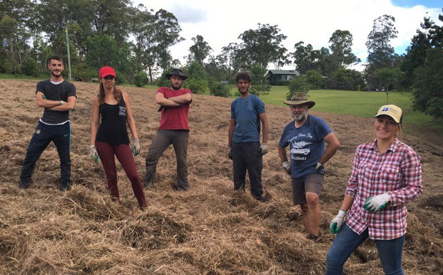Macleay Valley Food Bowl producers start new crop
