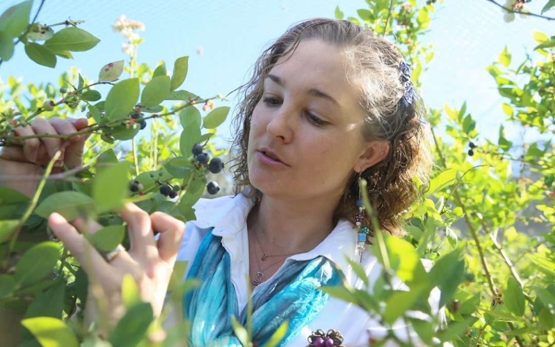 Macleay Valley Food Bowl Producers to Attend Top Food Event